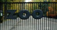Miejski Ogród Zoologiczny podsumowuje dobry rok